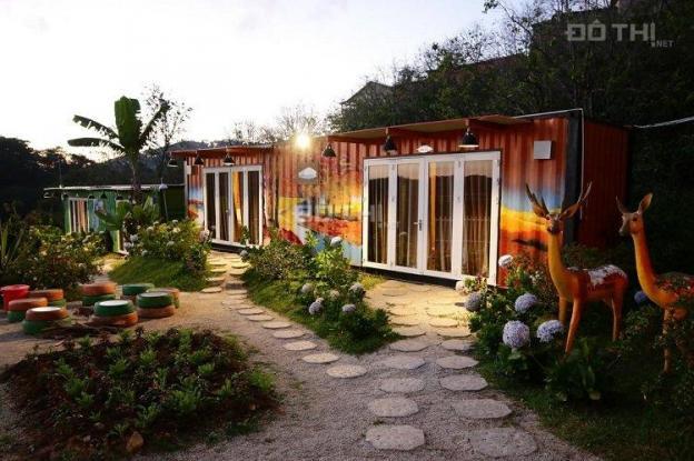 Bán biệt thự, homestay ngay trung tâm Đà Lạt view đẹp kinh doanh lợi nhuận cao, ổn định bán nhanh 13449899