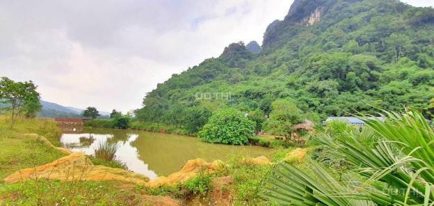 Em cần bán gấp lô đất nghỉ dưỡng view tuyệt đẹp tại Lương Sơn, Hòa Bình diện tích 8500m2 13452335