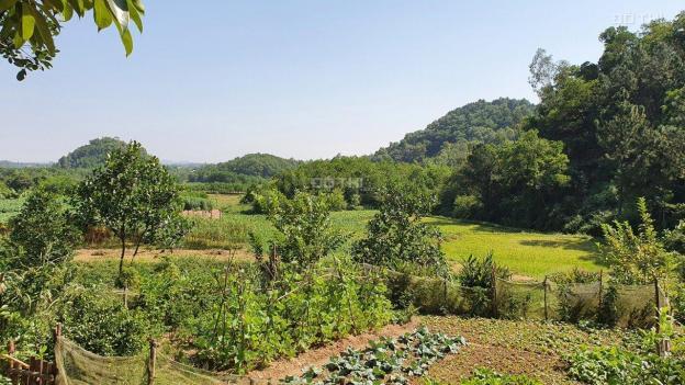 Đất hồ sinh thái Bắc Sơn, Sóc Sơn, đường ô tô, giá hấp dẫn 13479538