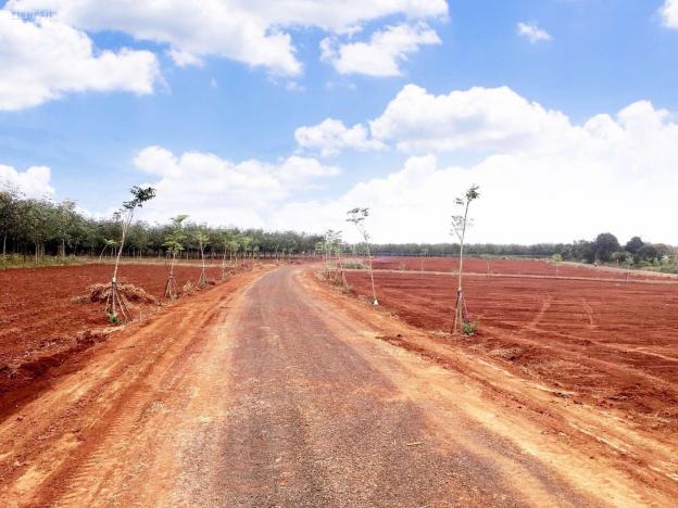 Giá chỉ 1 triệu/m2 đã sở hữu trong tay đất nền full thổ cư 13497999