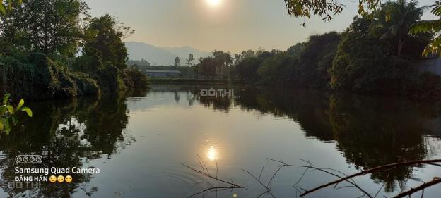 Bán nhanh 240m2 đất phân lô tại Hoàng Văn Thụ, liên hệ 0965511386 13515675