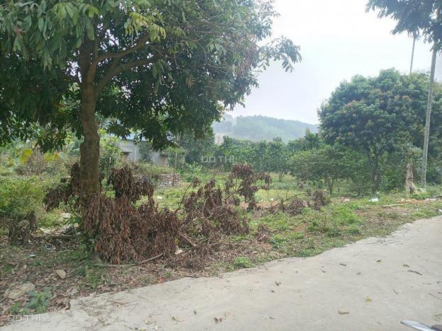 Cần bán 1.500m2 đất thổ cư bám mặt đường liên xã tại Lương Sơn, Hòa Bình 13554963