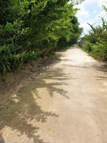 Cần bán nhà đất tại thôn 2A, Đông Hà, Đức Linh, Bình Thuận, giá tốt 13555840