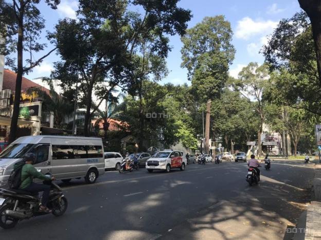 Cho thuê nhà số 6B đường Phạm Ngọc Thạch, Phường 6, Quận 3, Hồ Chí Minh 13572814