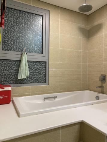 Tôi chính chủ cần bán căn hộ chung cư ngay Landmark 81 - Vinhome Tân Cảng 13588971