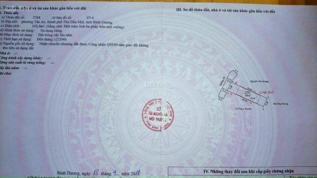 Nhánh Huỳnh Thị Hiếu đường thông tại Phường Tân An TP Thủ Dầu Một Bình Dương 13615670
