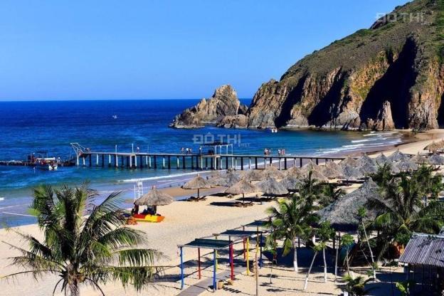 Chỉ từ 1,2 tỷ sở hữu căn hộ cao cấp Takashi Ocean 100% view biển, cạnh KDL Kỳ Co Eo Gió 13622406