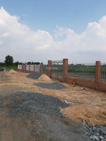 Bán đất tại xã Tân Thạnh Đông, huyện Củ Chi diện tích 2365 mét vuông 13656655