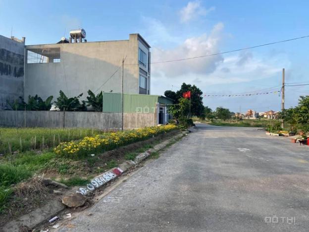 Bán 80m2 đất tại TĐC Gốc Lim - Hải An - Hải Phòng 13680767