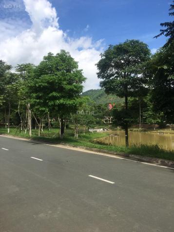Cần bán biệt thự song lập giá 10,5 tỷ diện tích 286m2 dự án Xanh Villas Thạch Thất, Hà Nội 13695022