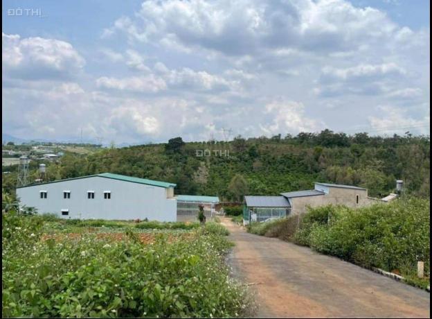 Bán lô đất thổ cư hẻm 360 Phan Đình Phùng, Phường 2, Tp Bảo Lộc 13701974