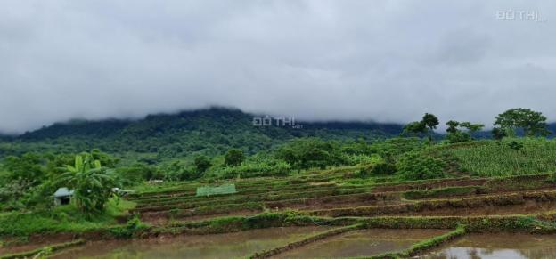 Bán đất Kim Bôi, Hòa Bình Bám Hồ, cạnh khu đô thị nghỉ dưỡng sinh thái của tập đoàn Sun Group 13719303
