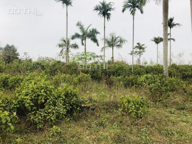 Bán đất nằm trong quần thể Top Hill Villas tại Lương Sơn, Hòa Bình 13728318