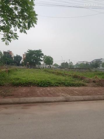 Bán đất tái định cư Bắc Phú Cát trung tâm của khu cnc Hòa Lạc, gần khu Phenika 13816856
